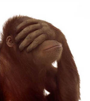 facepalm_monkey1.jpg