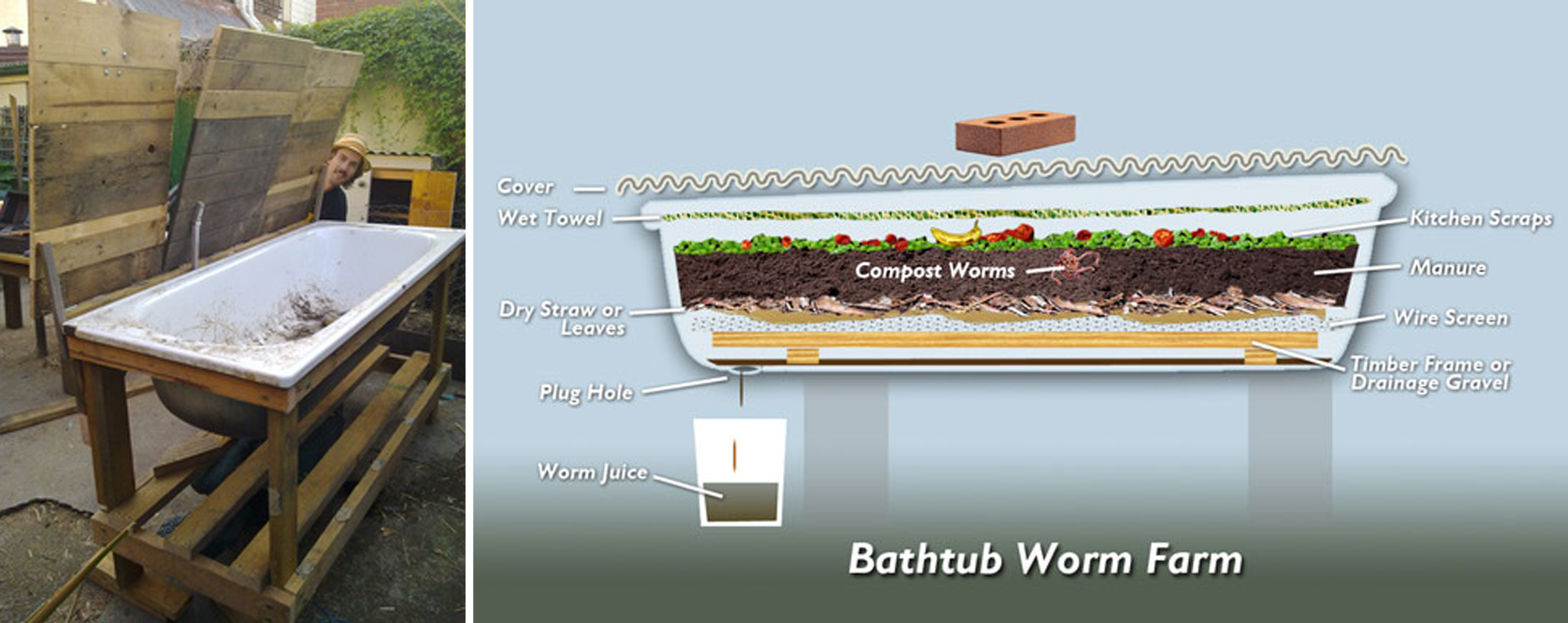 bath-worm-farm.jpg