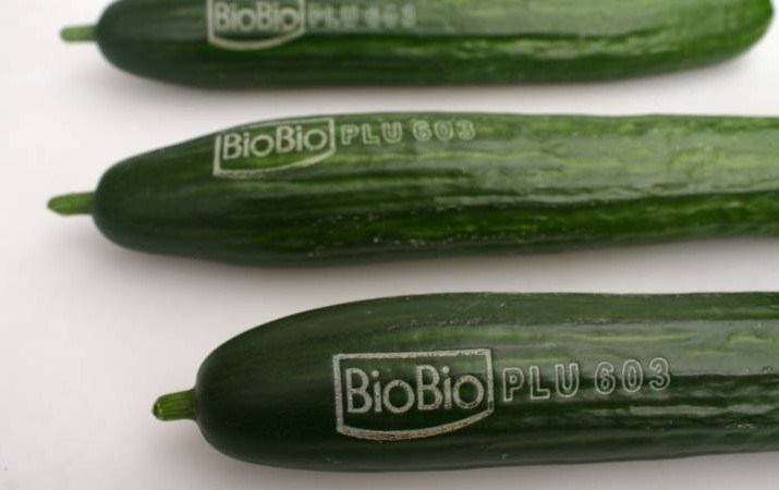 Tattooed_cucumbers_in_the_fight_against_plastic.jpg